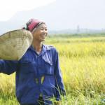 Lao động Việt Nam xếp hạng NÔNG DÂN – Trách nhiệm của CEO