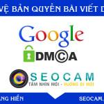 Hướng dẫn Báo cáo vi phạm DMCA và bảo vệ bản quyền nội dung