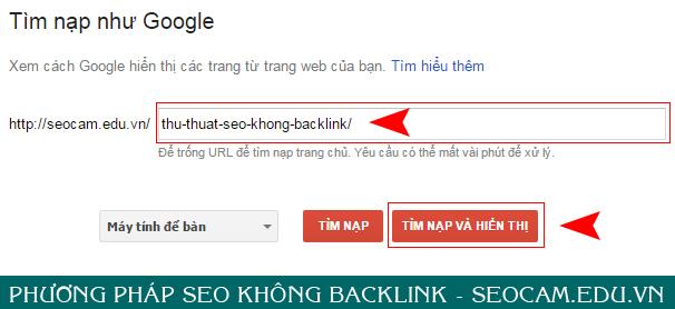seo-khong-backlink