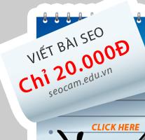 Dịch Vụ Viết Bài Chuẩn SEO cho Website